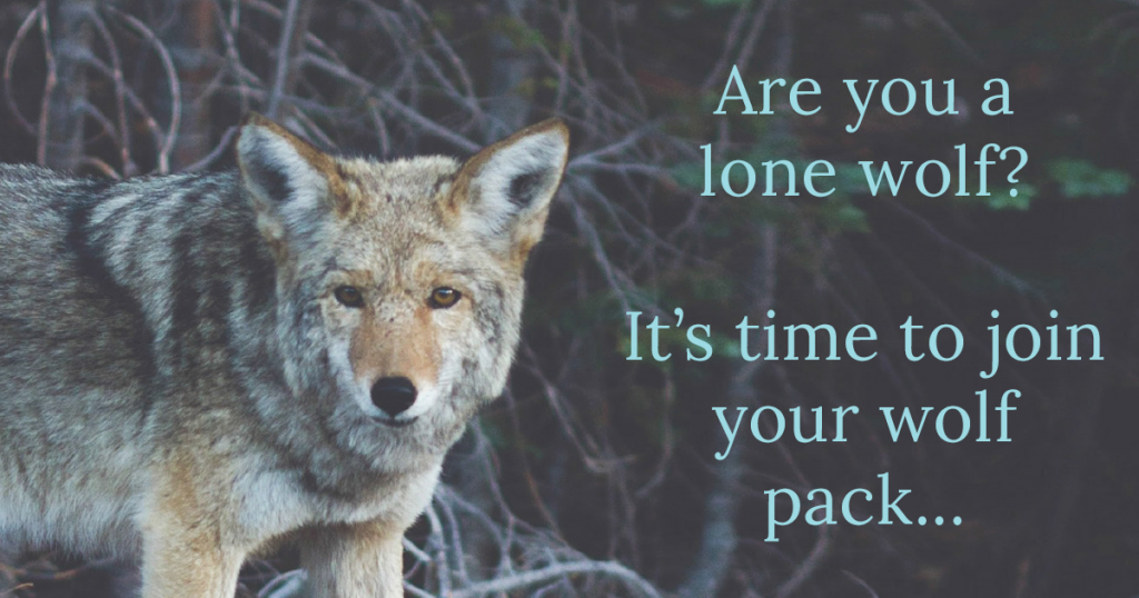 wolf-pack-title